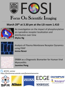FOSI seminar in the LSI room LSC1 on June 18th (Tuesday) at 2pm